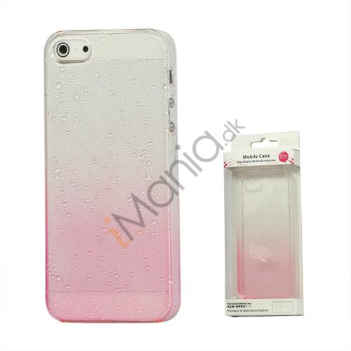 Image of   Gradient Color Regndråbe Hard Case til iPhone 5 - Pink